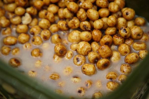 Préparation Tigernuts