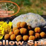 Dynastie Baits - Bouillette Bigoût Yellow-Néo Spice