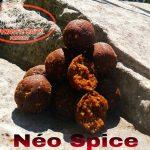 Dynastie Baits - Bouillette Néo Spice