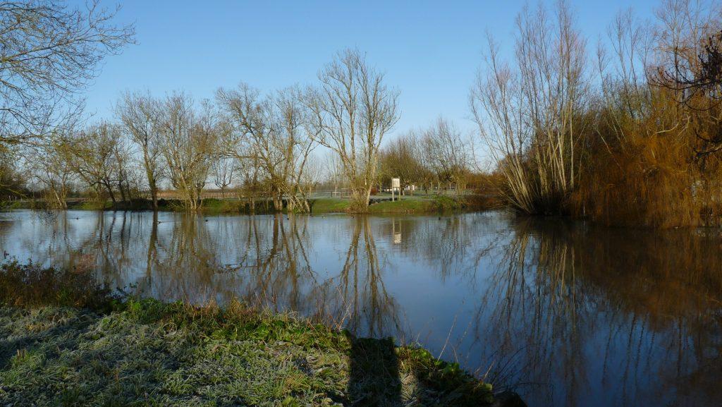 La rivière Vendée - Secteur Velluire