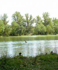 Lac de Cahuzac