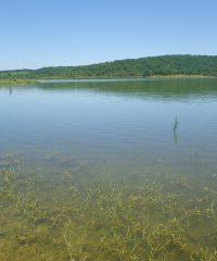 Lac de la Castagnère