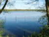 L'étang de la Bornière ou étang de Bain de Bretagne