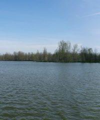 L'étang des Colons