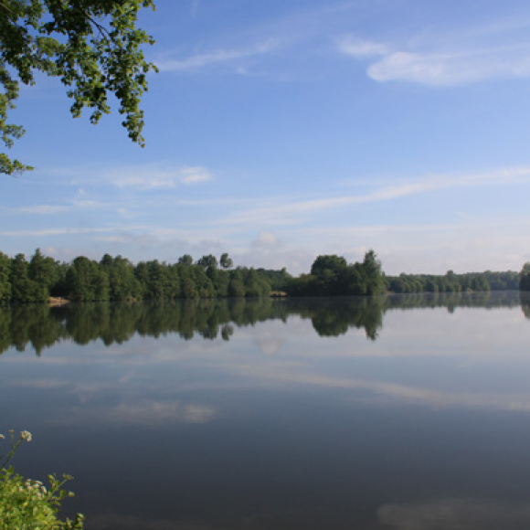 Côtes-d'Armor (22)