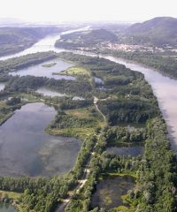 Le Rhône – Secteur Châteauneuf du Rhône