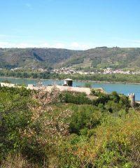 Le Rhône – Secteur Serves sur Rhône