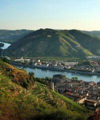 Le Rhône – Secteur Tain L'Hermitage