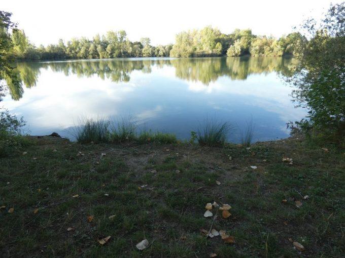 Domaine Authentic Fishing DC