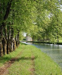Canal Champagne Bourgogne – Secteur Rolampont