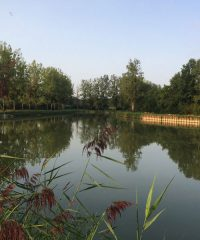 Canal de Bourgogne – Secteur Dijon