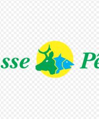 Chasse Pêche Langon