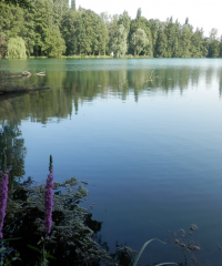 Plan d'eau de Comteville