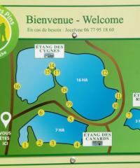 Domaine Des Pins