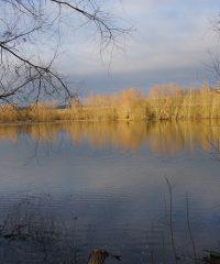 L'étang de Béthencourt