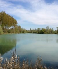 Étang n°2 – Vallée Boidin