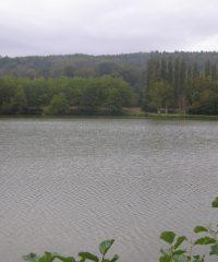 Étang Fontaine-la-Sorêt