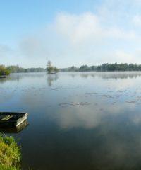 Le grand étang de Mareuil Caubert
