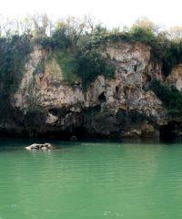 Lac de Pinet