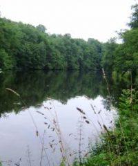 Lac de Barrage du Gour noir