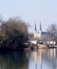 La Saône – Secteur Lamarche sur Saône
