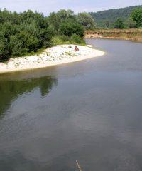 La Meuse sauvage – Secteur Ourches sur Meuse