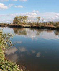 La Meuse sauvage – Secteur Pont sur Meuse