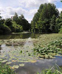 Le Parc Gustave Courbet