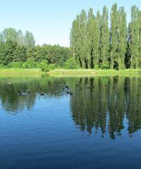 Lac de Labarre