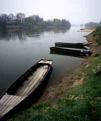 La Loire – Secteur Chouzé Sur Loire