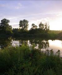 Marais de Lancin