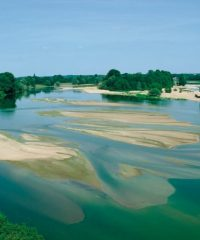 La Loire – Secteur Langeais