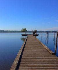 Lac naturel de Soustons