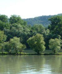 Le Rhône – Secteur Sablons
