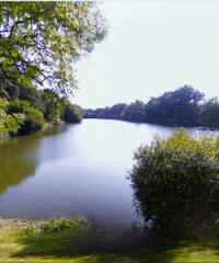 Plans d'eau des Tilleuls