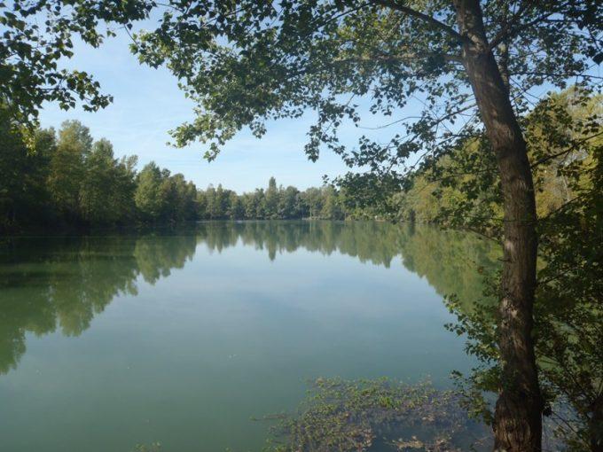 Lac Massicam