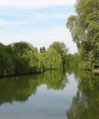 La rivière Indre secteur Buzançais