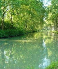 Le Canal du Midi – Secteur AIzonne