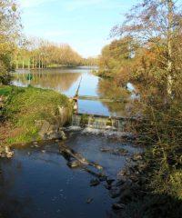 Plan d'eau du Clos Trans-sur-Edre