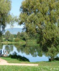 La Saône – Secteur Genouilleux
