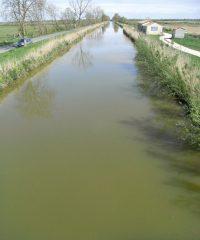 Le Canal de Brouage