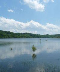 Lac Bassillon