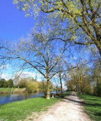 Canal de dérivation de la Sèvre Niortaise – Secteur Marans