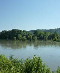 Le Rhône – Secteur Saint Rambert Albon