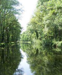 Le canal des Vosges – Secteur Neuviller sur Moselle