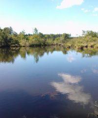 Lac de la Sablière