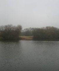 L'étang du Colombier
