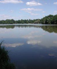 Grand étang de Venas
