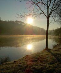 L'étang le Haricot