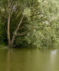 Plan d'eau de Saint Quentin